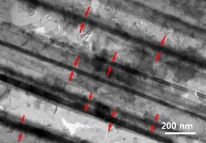 Silicon Nanotubes