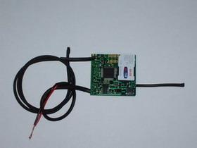 GSM Bug