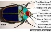 insetto robot per sorveglianza