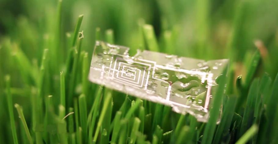 L'elettronica potrebbe essere biodegradabile?