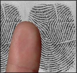 fingerprint recognition system